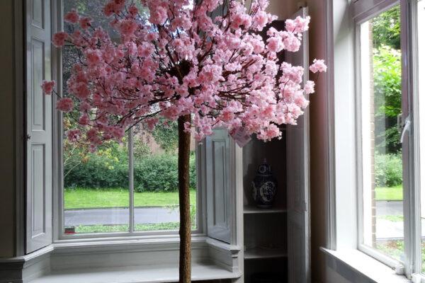 bloesembomen