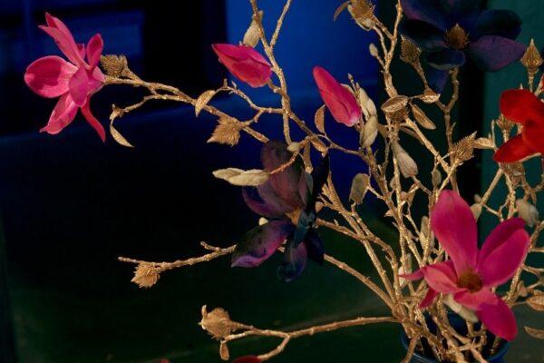 boudoir_-_festive_magnolia_s_-_shop_the_look_2020_-kleiner